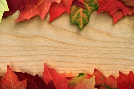 fall leafs on wooden board photo