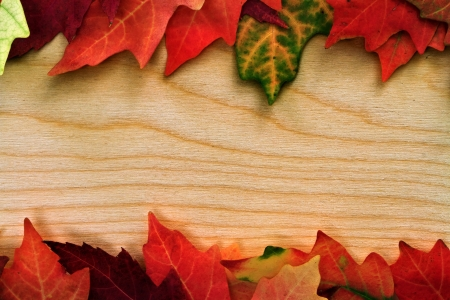 fall leafs over wooden board photo