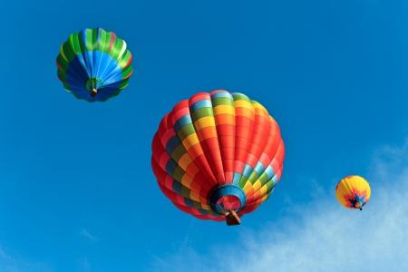hot colors: colorful hot air balloons