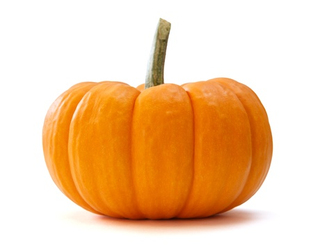 pumpkin over white background photo