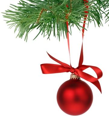 branche sapin noel: Branche d'arbre de No�l avec boule rouge