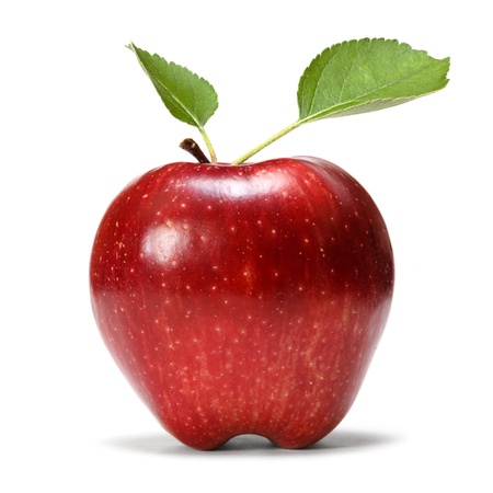 apple stock photo picture and royalty free image image 16655189