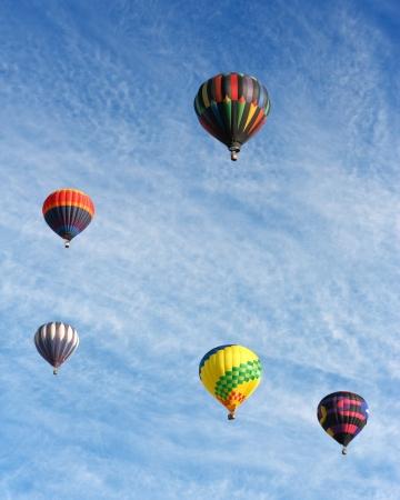 ballooning: colorful hot air balloons