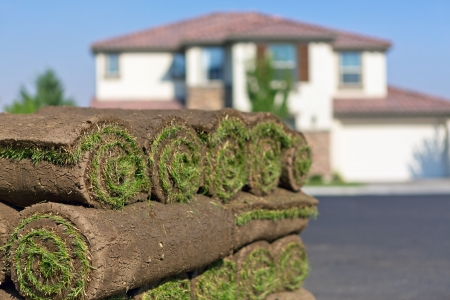 turf pile: stacks of sod rolls