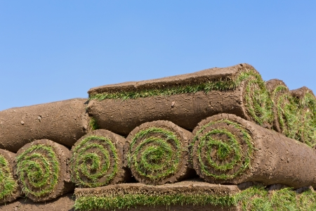 stacks of sod rolls photo
