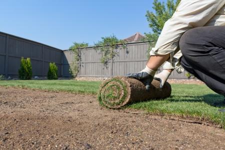 installeren van nieuwe graszoden Stockfoto