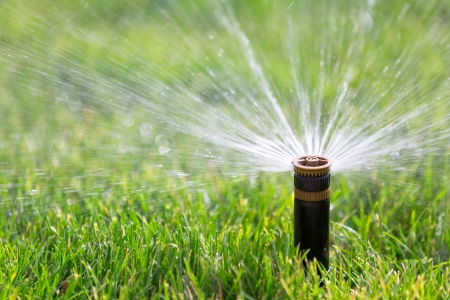 sprinkler watering grass 스톡 콘텐츠