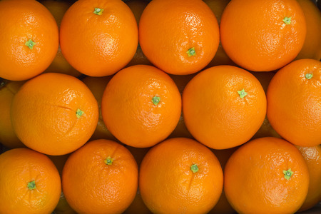 Orangen Standard-Bild - 25799151