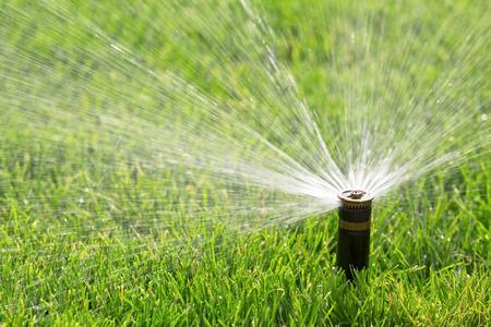automatic sprinkler watering lawn