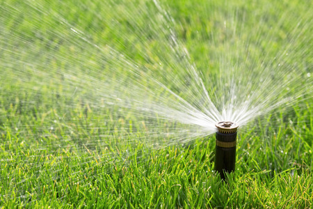 automatic sprinkler watering lawn