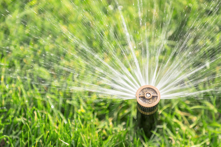 automatic sprinkler watering lawn photo