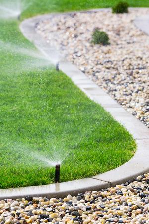 lawn sprinkler: Automatic sprinklers watering grass