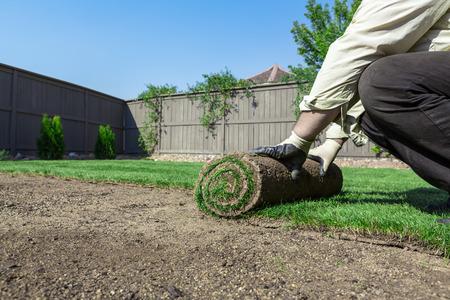 新しい芝生をインストールします。