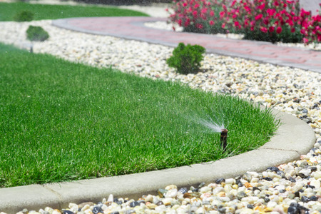 sprinkler: Automatic sprinkler watering grass