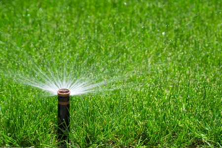 Automatic sprinkler watering grass