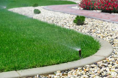 Automático hierba de riego por aspersión Foto de archivo