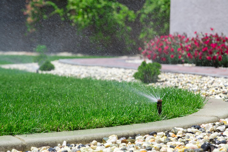 watering the plants: Automatic sprinkler watering grass