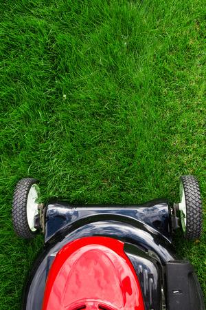 lawn mower: Lawn mower