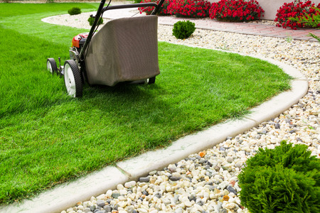 mowing grass: Lawn mower