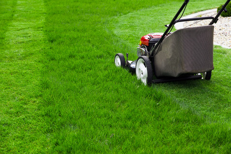 Lawn mower photo