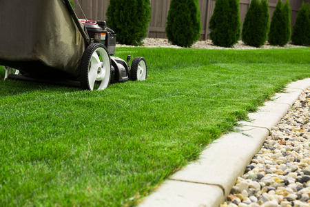 gardening equipment: Lawn mower