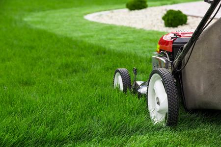 芝生芝刈り機
