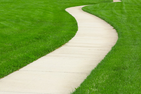 walk path: Pathway through green lawn