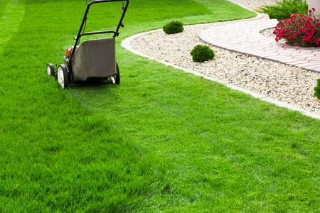 mower: Lawn mower on green lawn