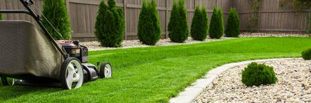 녹색 잔디밭에 잔디 깎는 기계 스톡 콘텐츠