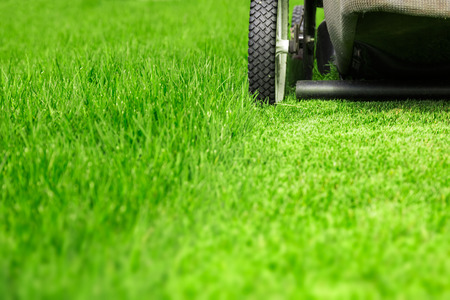 Rasenmäher auf grünem Rasen