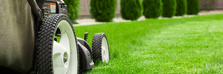 mowing grass: Lawn mower on green lawn