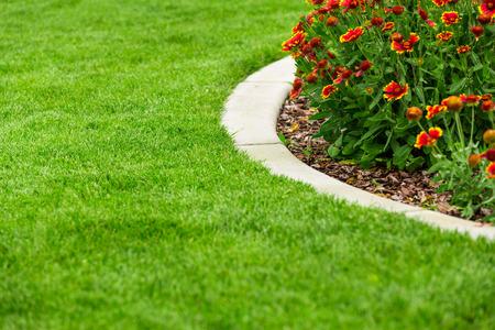 Garten Blumen Standard-Bild - 43090862