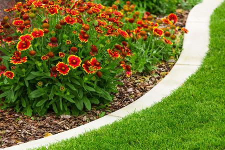 Jardin de fleurs Banque d'images - 43090865