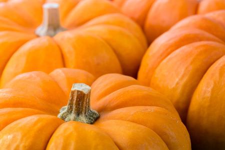 Pumpkins Archivio Fotografico