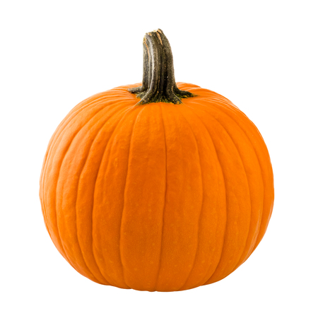 Pumpkin isolated on white background 스톡 콘텐츠