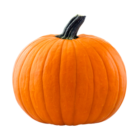 Pumpkin isolated on white background Banque d'images