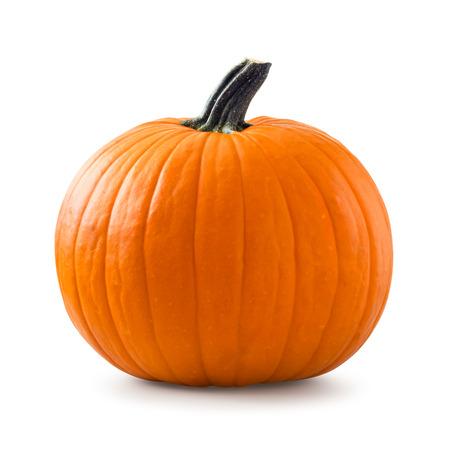 Pumpkin Archivio Fotografico