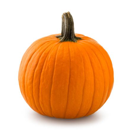 pumpkin patch: Pumpkin Stock Photo
