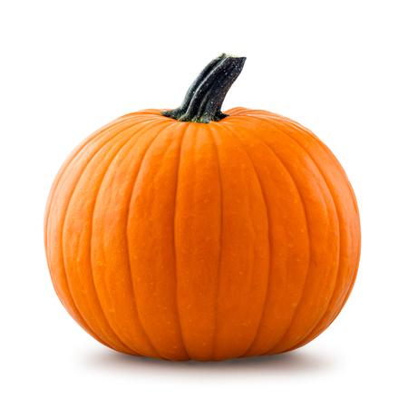 Pumpkin Banque d'images