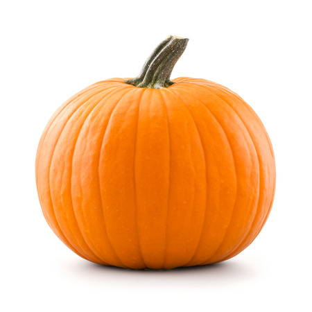 Pumpkin 写真素材