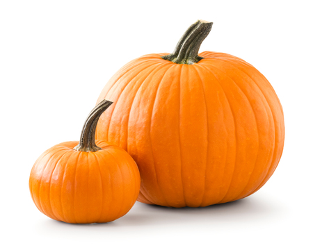 Two pumpkins isolated on white background Foto de archivo