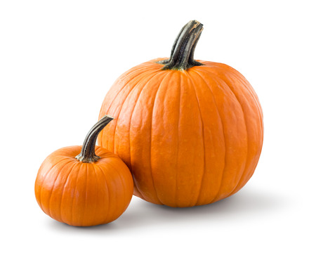 orange fruit: Two pumpkins