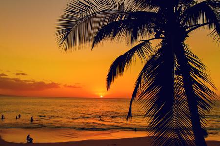 romance sky: Golden tropical sunset