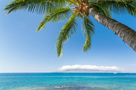 Sunny tropical beach Banco de Imagens