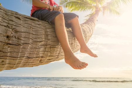 Boy sitting on palm tree on sunny tropical day at the beach