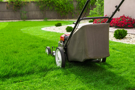 Lawn mower on green grass 版權商用圖片 - 51293838