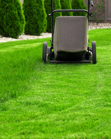 lawn: Lawn mower on green grass
