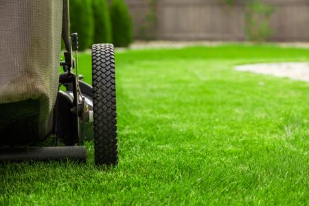 緑の芝生の上の芝刈機