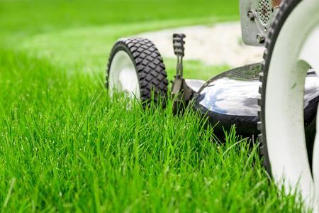 Grasmaaier op groen gras Stockfoto