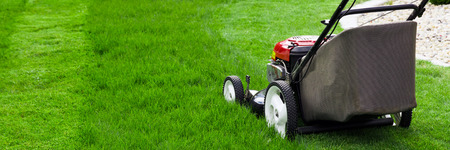lawn mowing: Lawn mower on green grass